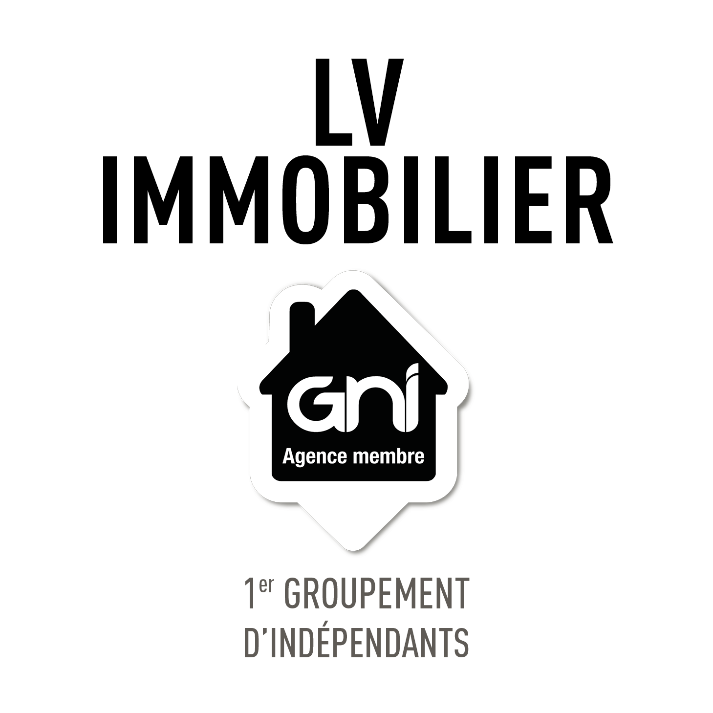 LV IMMOBILIER